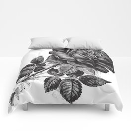 Engraved Rose Illustration Comforters