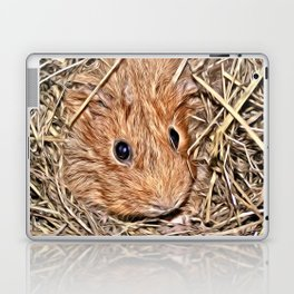 Painted Guinea Pig Baby Laptop & iPad Skin