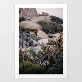 Desert Landscape Art Print