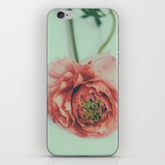 melon iPhone & iPod Skin
