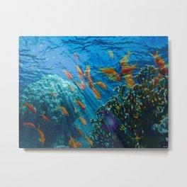 Orinoco Flow - Far Beneath the Coral Sea, Ocean Portrait by Jeanpaul Ferro Metal Print