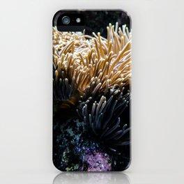 Understated Anemone iPhone Case