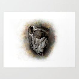 Black Rhino Watercolor Portrait Art Print