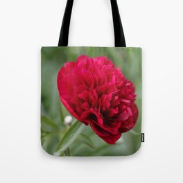Red Peony in Bloom Tote Bag