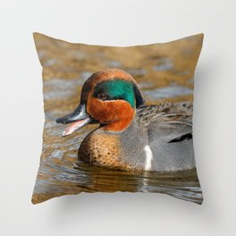 Talkative Green-Winged Teal at the Pond Throw Pillow