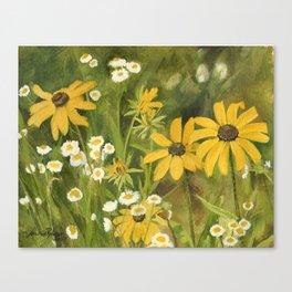 Watercolor Black Eyed Susan Wildflower Botanical Garden Flower Canvas Print