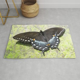 Watercolor Butterfly, Black Swallowtail Butterfly 01, Cucumber Falls, Pennsylvania Rug