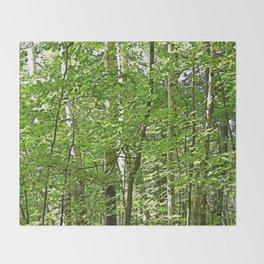 Birches Throw Blanket