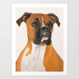 Buster Boxer Dog Art Print