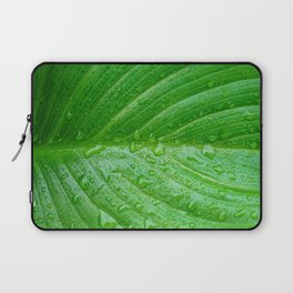 Close up of beautiful water drops from morning dew in perfect Arum Lily leaf. Laptop Sleeve