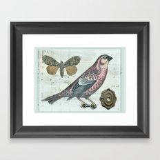 Vintage boho and bird Framed Art Print