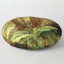 Fern and Sequoia Trunks Floor Pillow