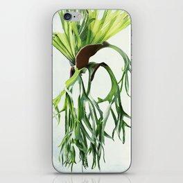 Staghorn iPhone Skin