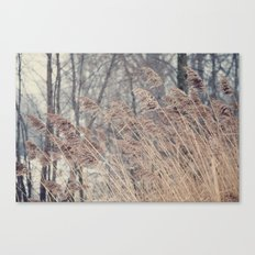 Swaying Grasses Canvas Print
