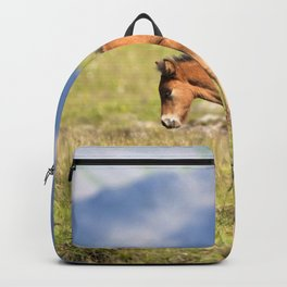 Watercolor Horse 30, Icelandic Pony, Höfn, Iceland, Stretch! Backpack