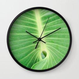 Palm CR Wall Clock