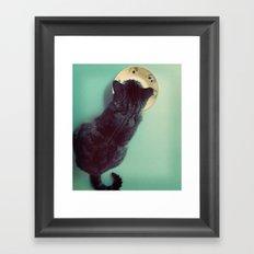 Cat and Saucer Framed Art Print
