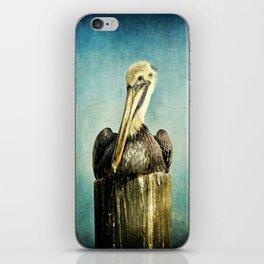 Brown Pelican Art iPhone Skin