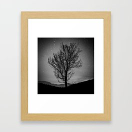 Lost lake solo tree Framed Art Print