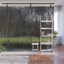 A little pond in a forest in the Netherlands Wall Mural