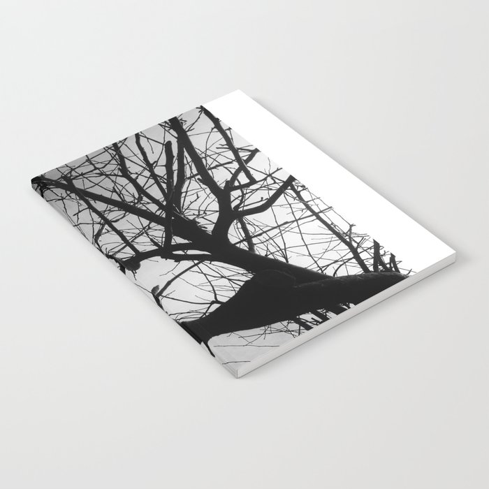 Generations Notebook