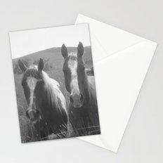 buddies Stationery Cards