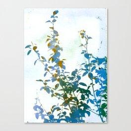 Botanical Bouquet Canvas Print