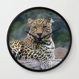 Aqua_Leopard_20180105_by_JAMColorsSpecial Wall Clock