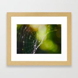 Broken Spider Web Framed Art Print