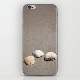 Three Seashells iPhone Skin
