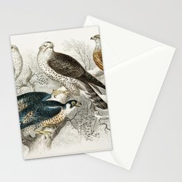Gyr Falcon, Goshawk, Kite or Glead, Peregrine Falcon, and Kestril (Female) from A history of the ear Stationery Cards