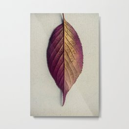 Lonely Leaf Metal Print
