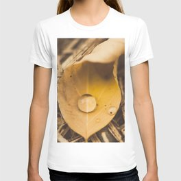 Yellow drop on a leaf T-shirt