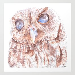 Zeus the Blind Owl Art Print