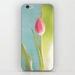 Morning tulip iPhone Skin
