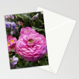 Spring Rosy Ranunculus And Primrose With Violet Violas Stationery Cards