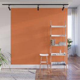 Boca Solid Shades - Apricot Wall Mural