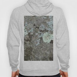 Lichen on granite Hoody