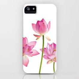 Lotos Waterlilies Flowes pink iPhone Case