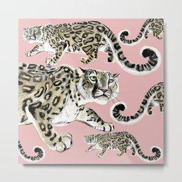 Snow Leopard in Pink Metal Print