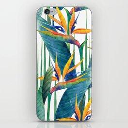 Watercolor strelitzia iPhone Skin