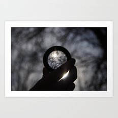 Focus on the Sunlight Art Print