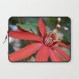 PassionFlower Laptop Sleeve