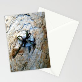Seashell Present Stationery Cards