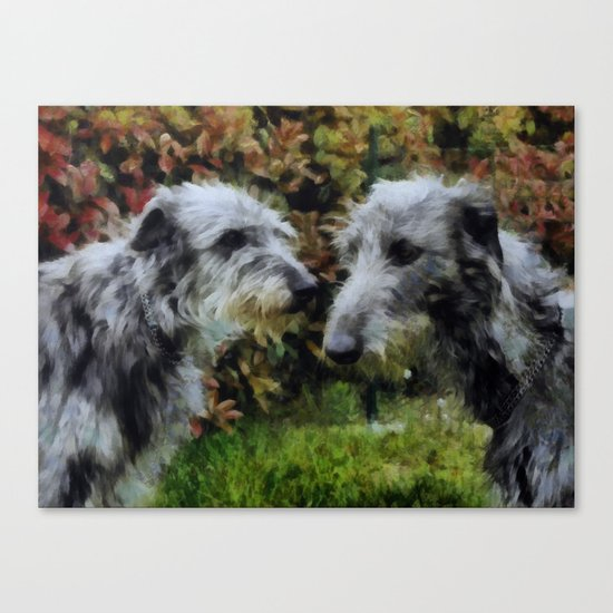 scottish deerhounds Canvas Print