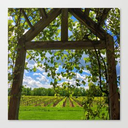 Under the Arbor Canvas Print