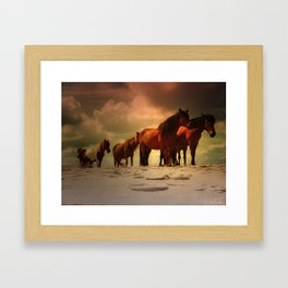 Beached Ponies Framed Art Print