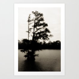 Crypress Tree at Sunrise on the Bayou Art Print