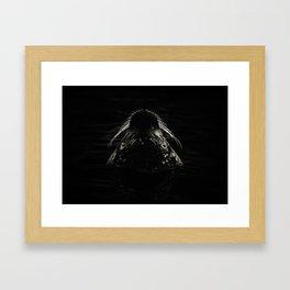 Harbor Seal Framed Art Print