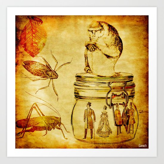 The revenge of insects Art Print